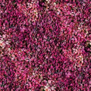 紫陽花のパッチワーク